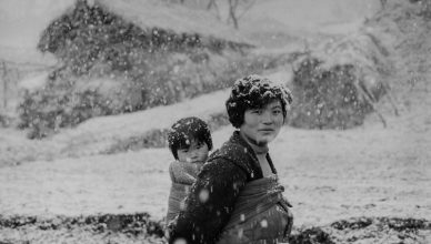 Imaging Korea mostra a villa bardini firenze